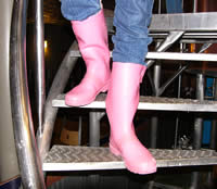 Teri Pink Boots